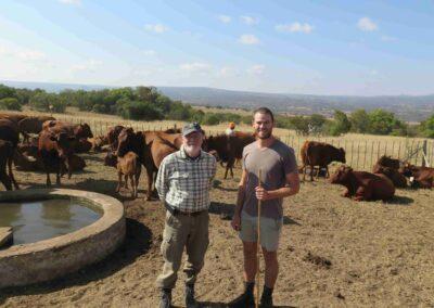 Anton Raundahl i Sydafrika med kvægracen Bonsmara
