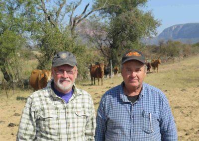 Anton Raundahl i Sydafrika med kvægracen Boran